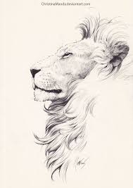 best 25 lion art ideas on pinterest lion drawing lion face