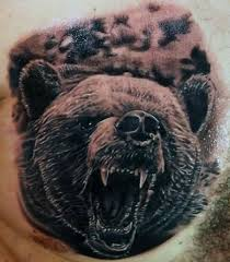 Ozzy The Grizzly Bear Picks The Eagles To Win The Super Bowl Local - comments off on brilliant grizzly bear face tattoo for man s chest