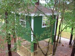 gorgeous inspiration 5 basic tree house plans 2 story project