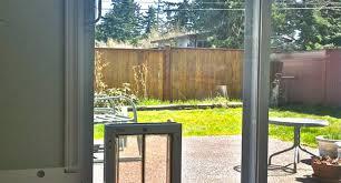 sliding glass cat door insert image collections glass door
