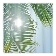 best palm tree bathroom products on wanelo
