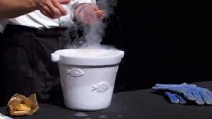 bill nye the science guy has fun with liquid nitrogen youtube