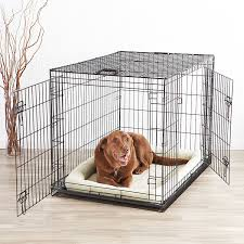 crate training getting a dog how to take care of a puppy or dog pet territory