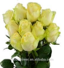 fresh flowers in bulk bulk fresh flower marigold bulk fresh flower marigold suppliers