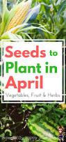 Herb Grower S Cheat Sheet 396 Best Garden Images On Pinterest Organic Gardening Garden