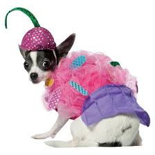 Target Dog Halloween Costume 14 Insanely Adorable Foodie Pet Costumes Halloween