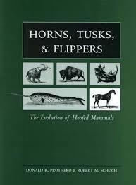 horns tusks flippers evolution hoofed mammals