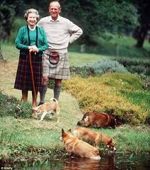 The Queens Corgis Why The Queen Loves Her Corgis As Much As The Rest Of The Palace