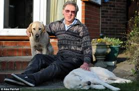 How Does A Guide Dog Help A Blind Person Guide Dog Aids Blind Owner And Former Leading Labrador After He