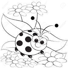 cute insect ladybug coloring pages for kids womanmate com