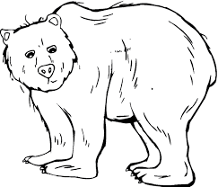 grizzly bear coloring free animal coloring pages sheets grizzly bear