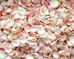 real petals real petals etsy
