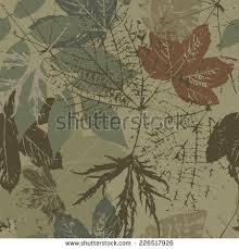 camouflage stock images royalty free images vectors