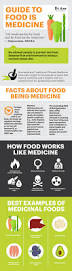 food is medicine the diet of medicinal foods science u0026 history