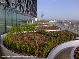 boningale grows 10 000 plants for library of birmingham pro