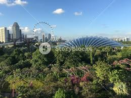flower dome and singapore flyer seen from supertree grove at the