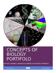 bio portfolio by concepts of biology portfolio issuu