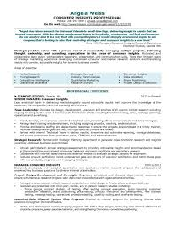 sample resume for finance manager business analyst cl park chief