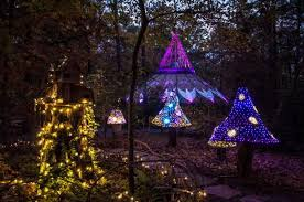 garvan gardens christmas lights 2016 garvan gardens holiday lights walk will enchant you in arkansas