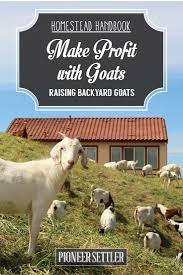 Backyard Cattle Raising Raising Goats For Profit Raising Goats Homestead Handbook