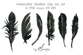 feathers clipart hostted cliparting com
