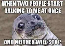 Talking Meme - 11 animal memes all introverts can relate to cuteness