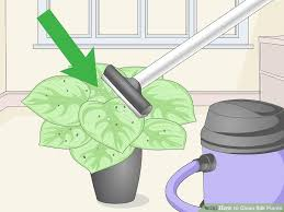 silk plants how to clean silk plants 9 steps with pictures wikihow