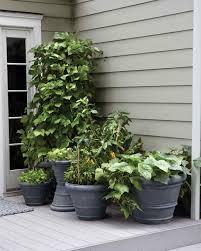 plain design patio gardening ideas 30 inspiring small balcony