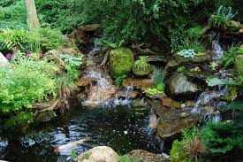 Waterfall Design Ideas Waterfall Design Ideas Landscape Traditional With Woods Woods Woods