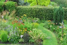 essentials for growing a cottage garden flowers blooming secrets