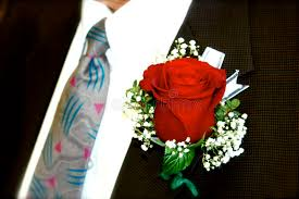 Red Rose Boutonniere Groom Wearing A Red Rose Boutonniere Stock Photo Image 18617090