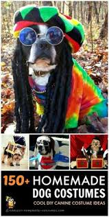 Halloween Costume Ideas For Pets Homemade Dog Halloween Costume Ideas For Your Dog Halloween
