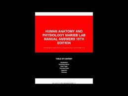Pearson Anatomy And Physiology Lab Manual Human Anatomy And Physiology Marieb Lab Manual Answers 10th