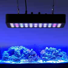 best lighting for corals best sales full spectrum 165w dimmable led aquarium light for reef