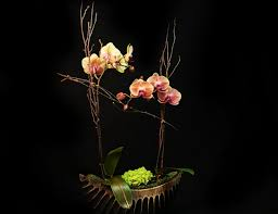 Flower Shops In Valencia Ca - la jolla florists flowers la jolla ca adelaide u0027s florists and