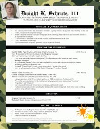 Sample Of Resume Download by Bad Examples Of Resumes Template Design