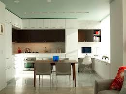 minimalist kitchen design houzz
