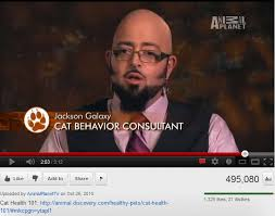 Cat Alien Meme - aliens guy s long lost brother jackson galaxy cat behavior