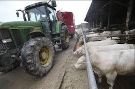 chambre d agriculture de l aisne une moyenne de vingt heures de travail par vache