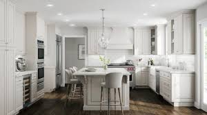 white kitchen cabinets raised panel raised panel cabinets buy raised panel kitchen cabinets