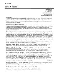 insurance personal sample resume dual nationality resume top