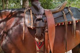 horse saddle worn mexican leather horse saddle no cost royalty free stock