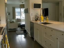 Kitchens Ikea Cabinets 64 Best Kitchens Ikea Images On Pinterest Kitchen Kitchen