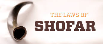 shofar mouthpiece the laws of shofar kosher spirit