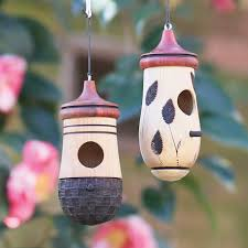 Nc Backyard Birds Backyard Birds Of North Carolina