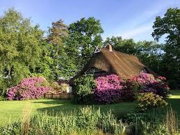 Garden Haus Kaufen Eine Oase Für Landliebhaber Und Pferdefreunde Reetdachanwesen