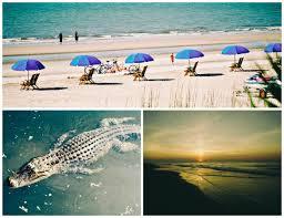 best south carolina beach town vacationrentals com