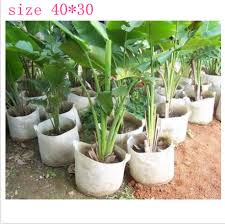aliexpress buy 40 30 non woven tree nursery planting bag