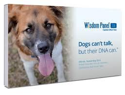 amazon com wisdom panel 3 0 breed identification dna test kit
