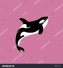 whale killer water orca swimming pool stock vector 698329603